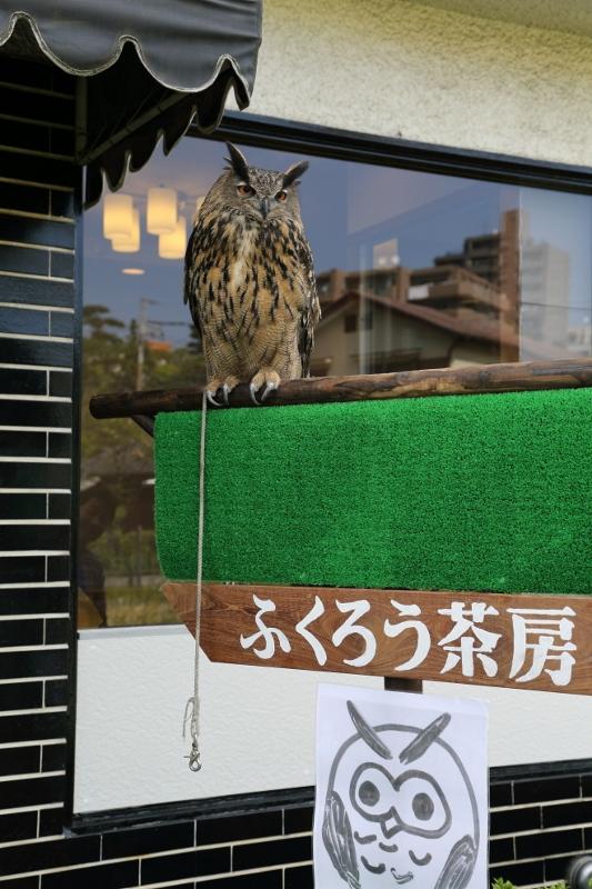 kokubunji_0023f.jpg