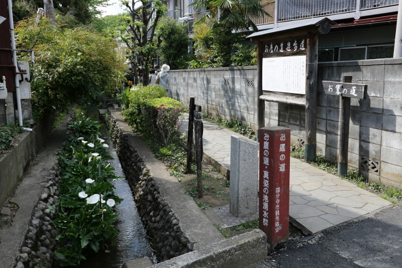 kokubunji_0028f.jpg