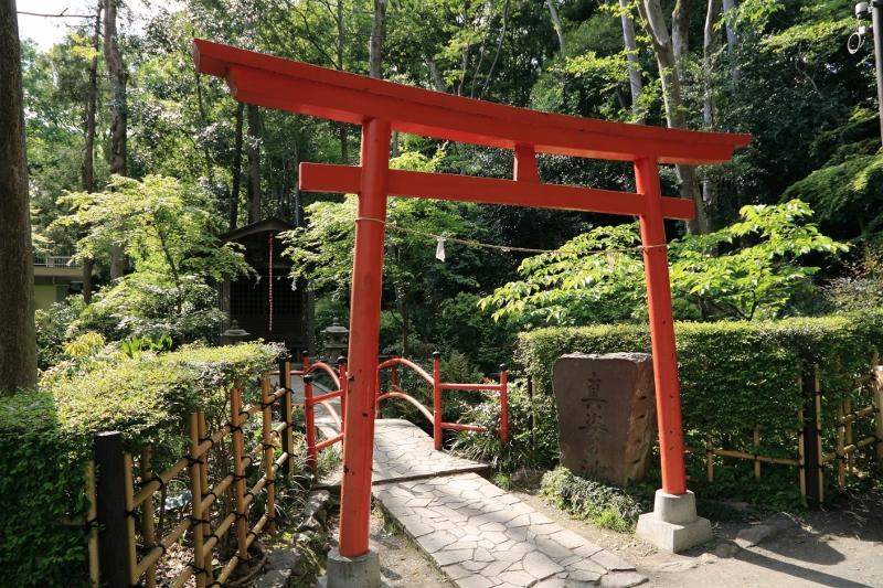 kokubunji_0033f.jpg