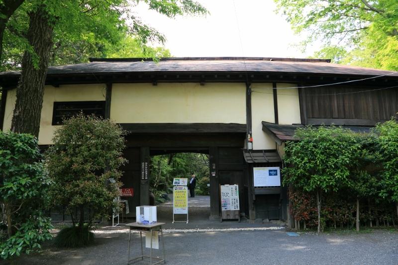 kokubunji_0036f.jpg