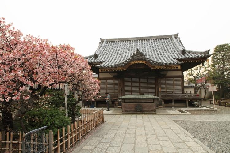 nishiarai_0015f.jpg