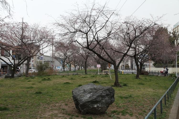 nishiarai_0021f.jpg