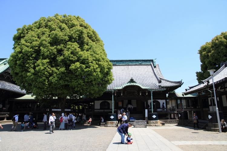taisyaku_0016f.jpg