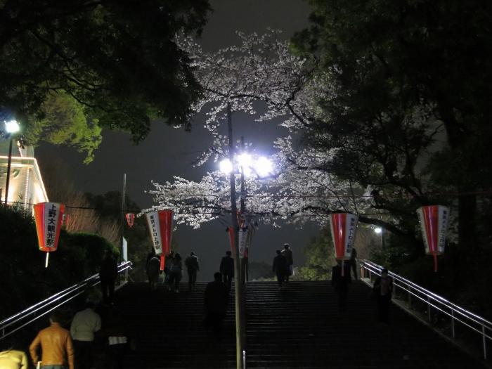 ueno-yozakura_0001f.jpg