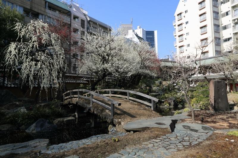 yushima-t_0005f.jpg