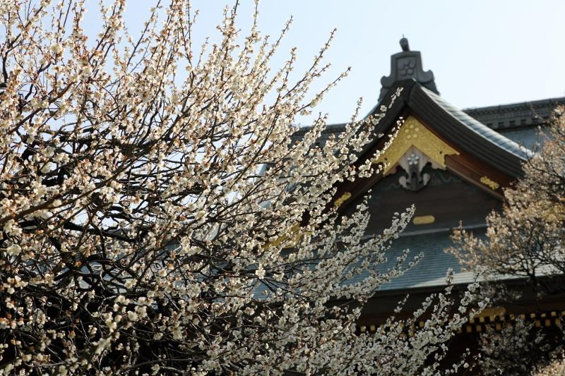 yushima-t_0013f.jpg