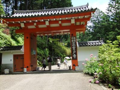 20120622三室戸寺5