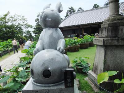 20120622三室戸寺8