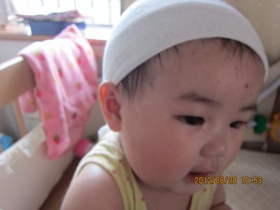 IMG_2206_convert_20120620105713.jpg