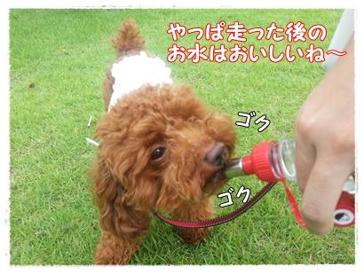 20120708_143434_11.jpg