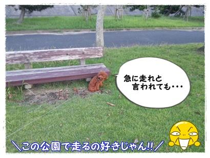20120818_190219.jpg
