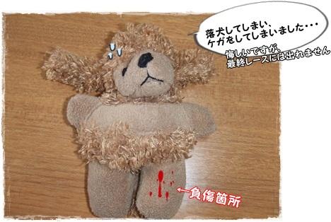 DSCF3361_20121128111107.jpg