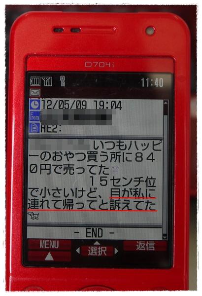 P1050897_20120510114616.jpg