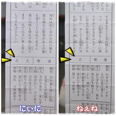 page_20130106193210.jpg