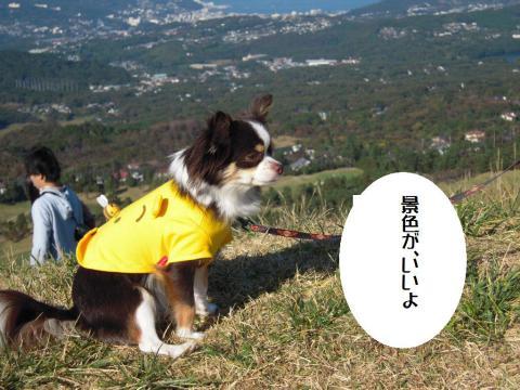 DSCN0031 大室山