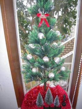 DSCN0173     クリスマス