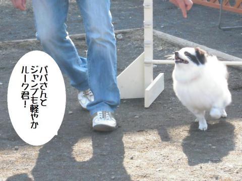 DSCN0273   平塚