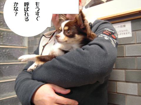 DSCN0229  横浜
