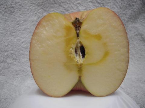 DSCN9987   りんご