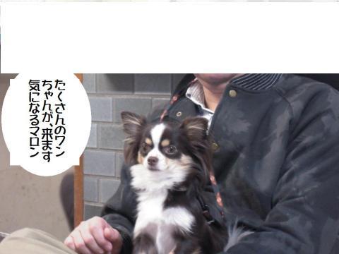 DSCN0003   横浜