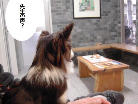 DSCN0002   横浜