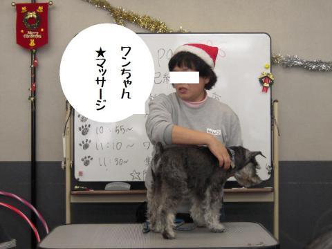 DSCN9929   ワン友 クリスマス