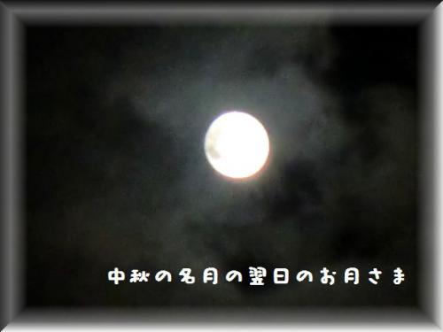 1188.jpg