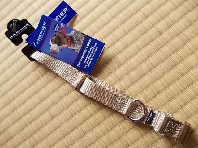 Premier collar 20130224