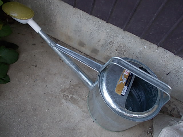 Watering can 20130428