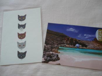 Happy wedding カード&ポストカード(東急ハンズにて)2