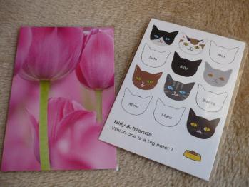 ポストカード購入(和風、猫、お花)201211-1