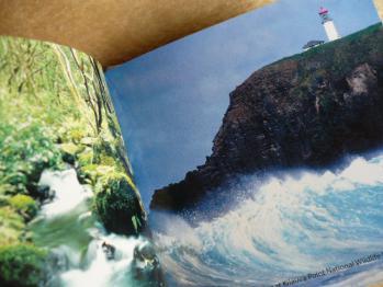 ハワイGから☆クリスマス2012-15-5