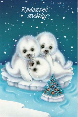 チェコのKからクリスマス2012-31