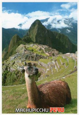 ペルーのEから20126-6