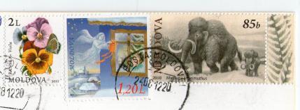 ポスクロ(受)215-2