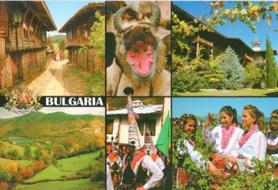 ブルガリアT20122-3