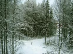 フィンランドPから20124-4