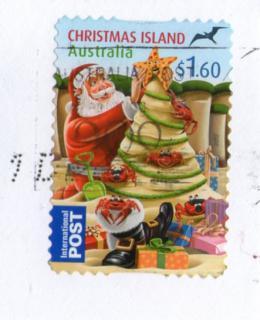 タスマニアHクリスマス2012-10-3