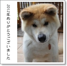 001_20121230123154.jpg