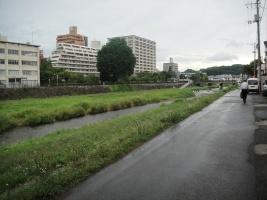 tomoko2012 014