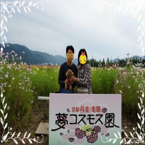 DSC04281_convert_20121026112100.jpg