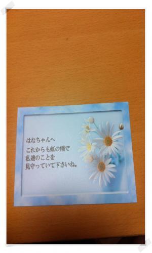 IMG_1790_convert_20120917224808.jpg