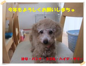 sally_convert_20130103224523.jpg