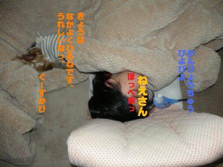 DSCN3027.jpg