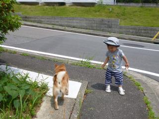 ながよぐ散歩