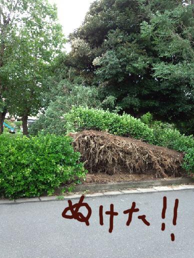 moblog_1def0251_20120621083544.jpg
