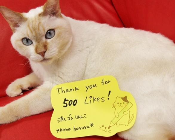 thankyoufor500likes!