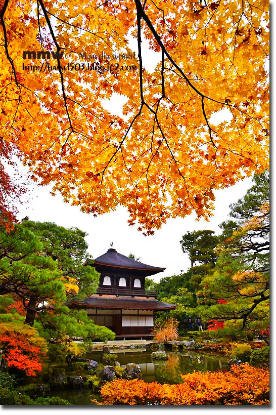 kyoto_au05.jpg