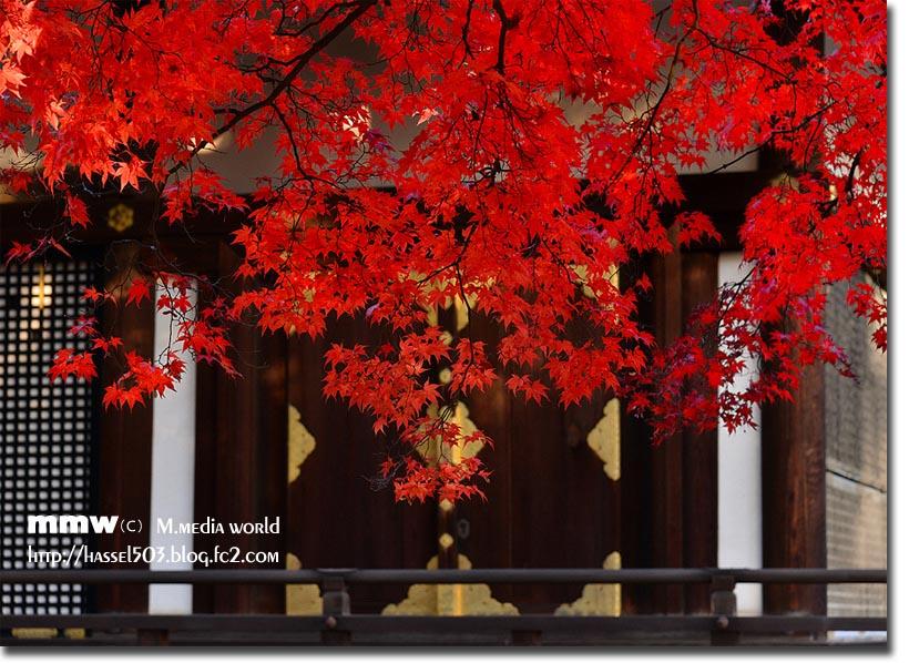 kyoto_au10.jpg