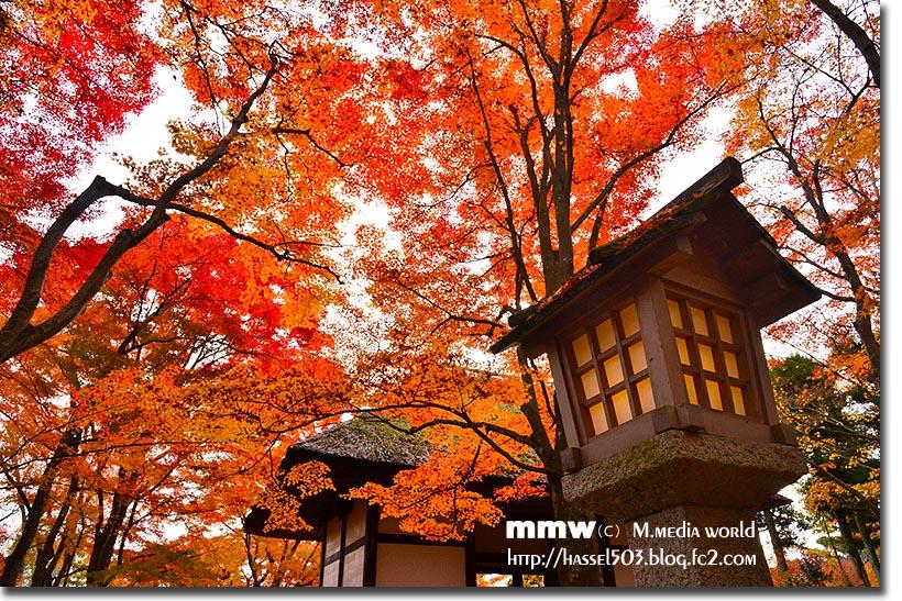 kyoto_au14.jpg